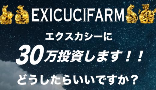「エクスカシーに30万円投資します!どうしたらいいですか?」